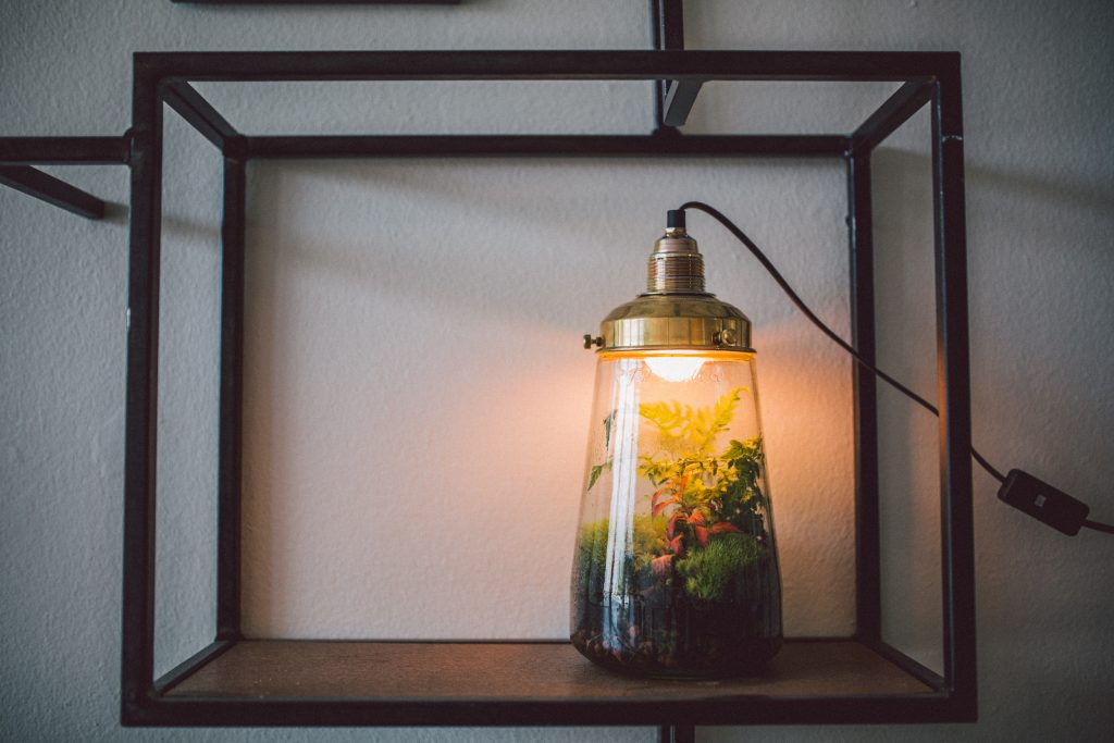 Spruitje Lamp, Wants&Needs