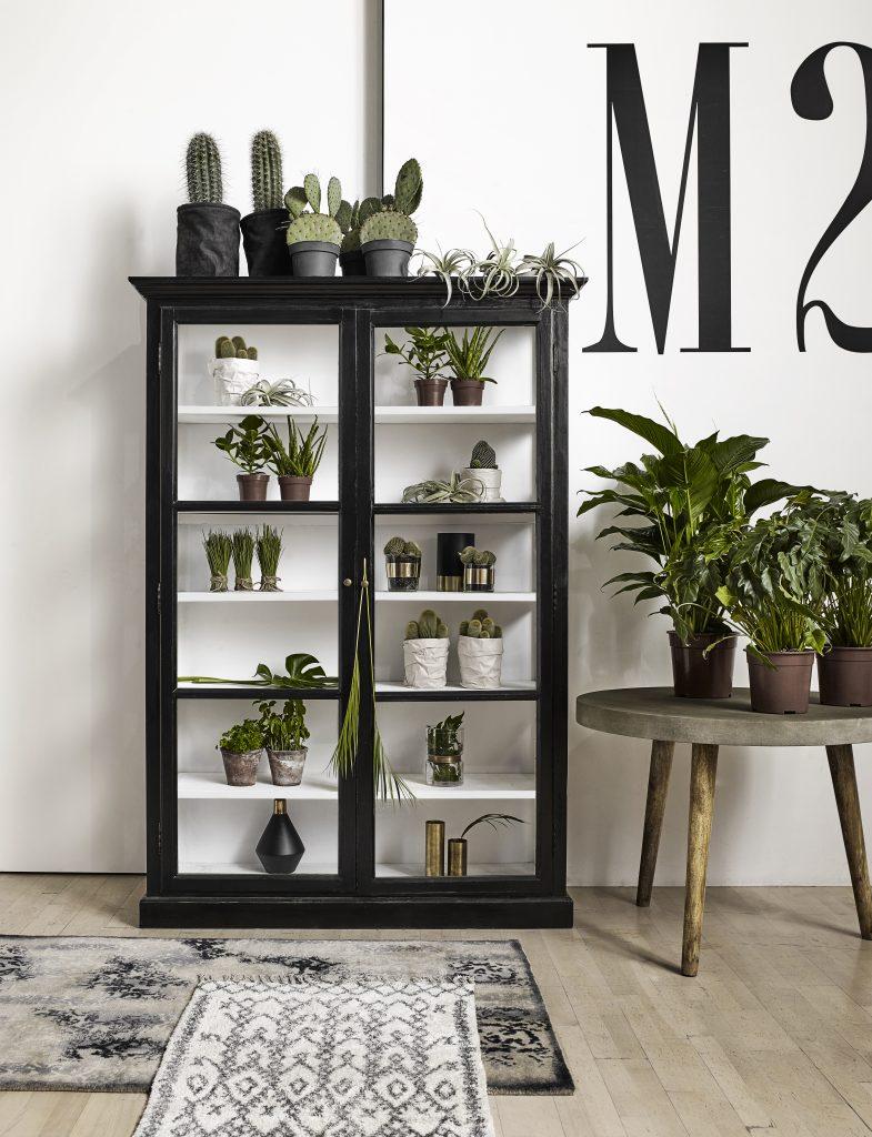 Musthaves voor een botanisch interieur | Wants&Needs