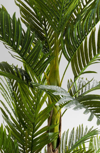 Kunstplant Palm Tree by Kare Design | Wants&Needs